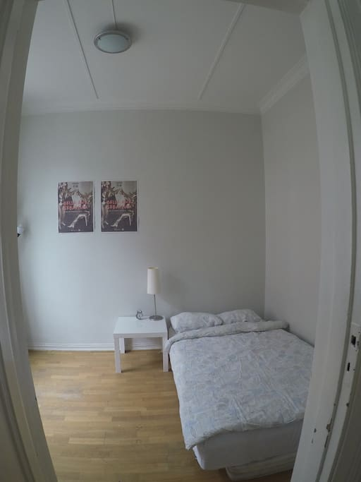 view from the entrance of the bedroom: bed to the right. window to the left