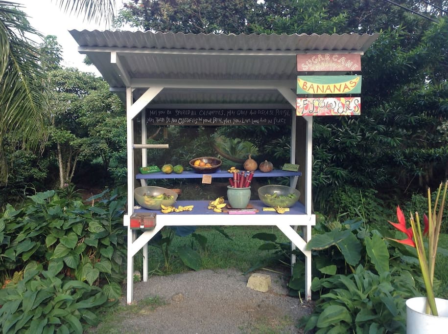 """farm stand.  Use this to image to find us.  There is a sign that reads """"HANA MANA ORGANIC PRODUCE,"""""""