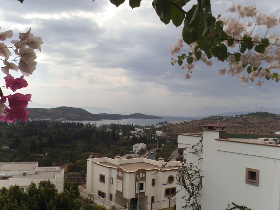 Balkonın manzarası