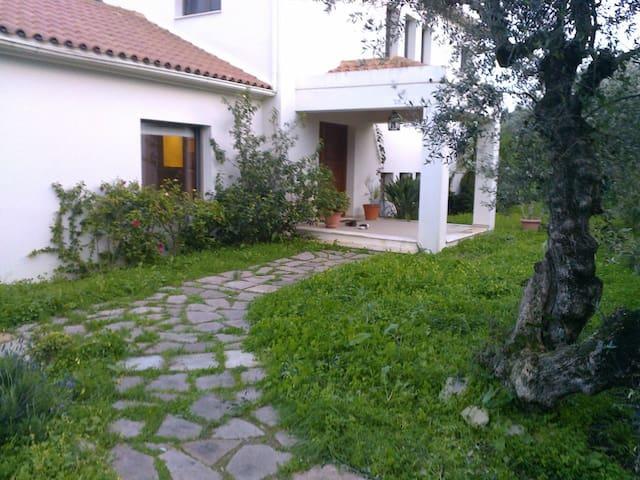 Villa VladimIra Zakintos Greece