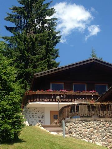 Splendido Chalet con giardino a Carezza Dolomiti - Carezza