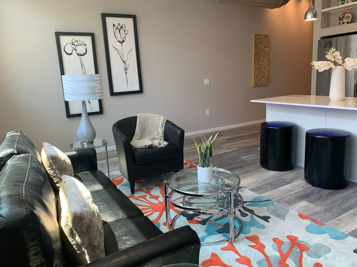 Downtown Furnished 1BR, 1BA Apt. 411 by R7 Lofts