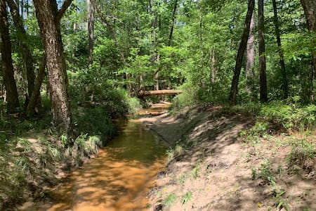 Come camp on 18 acres in the national forest!