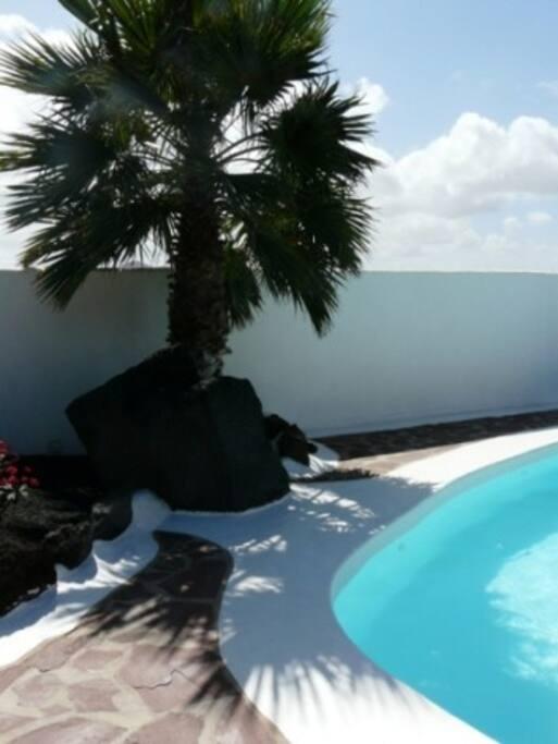 Casa Margarita´s Heated 8 x 4 Metre Heated Swimming Pool