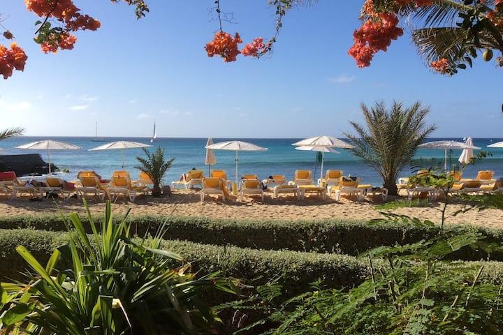Oceanfront beach apartment 4 Porto Antigo 2