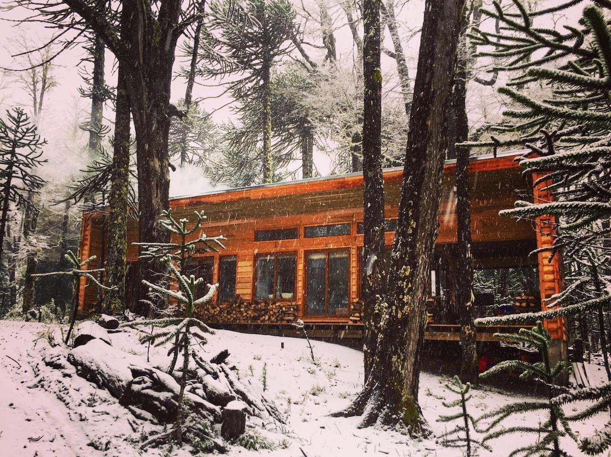 new cabin corralco airbnb