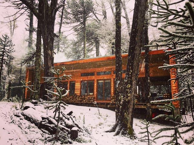 NEW Cabin in Malalcahuello - Corralco