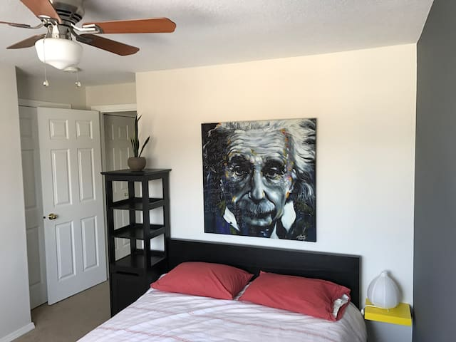 The Einstein Room... Sleep here, Be brilliant!
