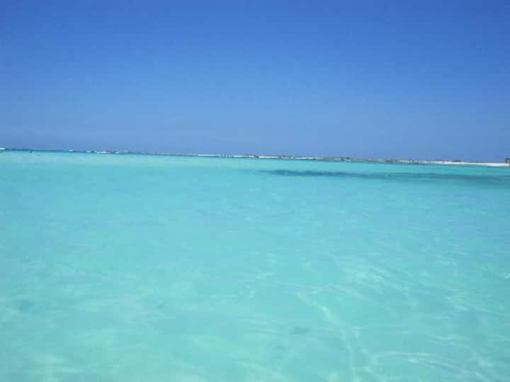 Marriott's Aruba Surf Club Timeshare Rental