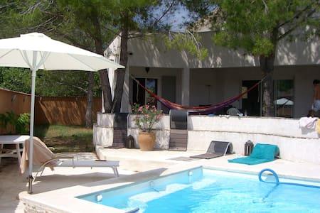 Villa bord de mer avec piscine - San-Nicolao