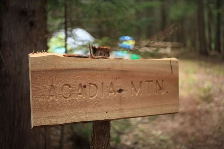Acadia East Campground - Acadia Mtn Campsite
