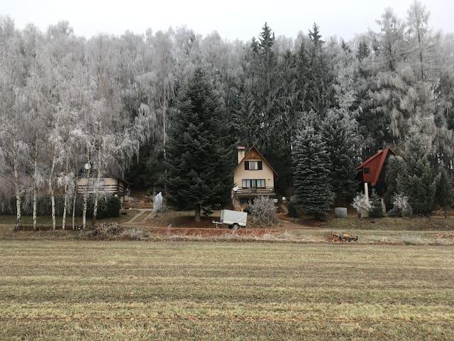 Chata Dolce nejen k rodiné rekreaci - Dolní Staré Buky - Hut