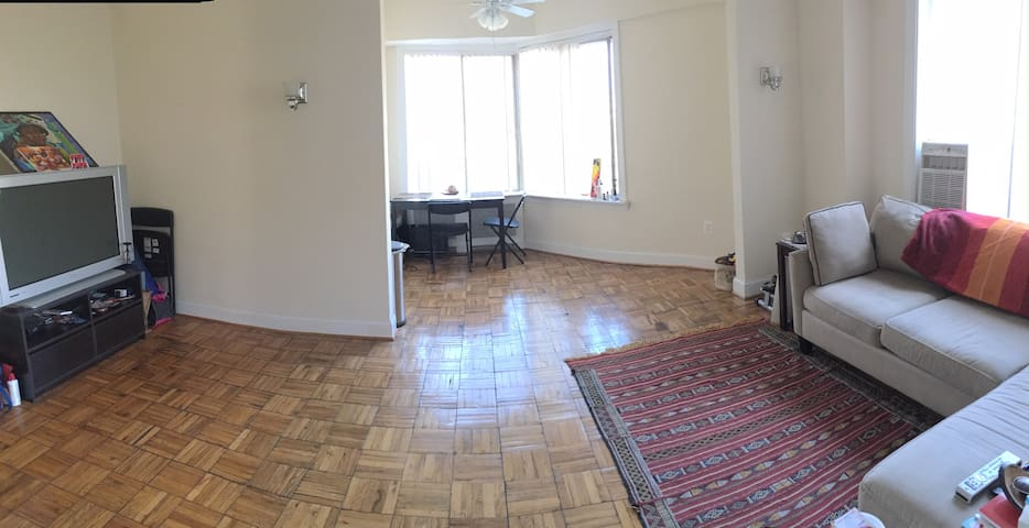Large, sunny 1 bedroom apartment in Adams Morgan