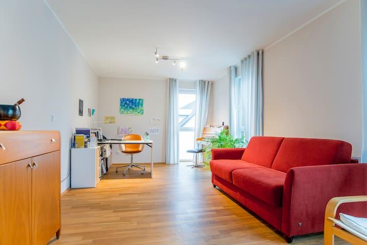 Spacious room, DUS city