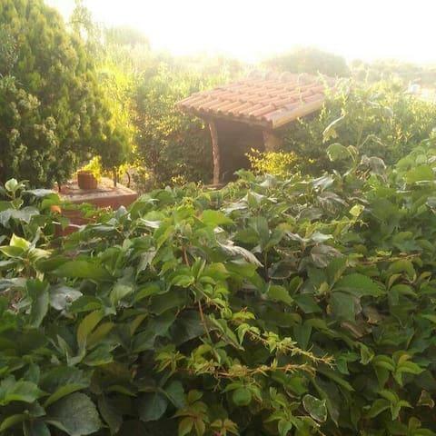 Il Paradiso Verde