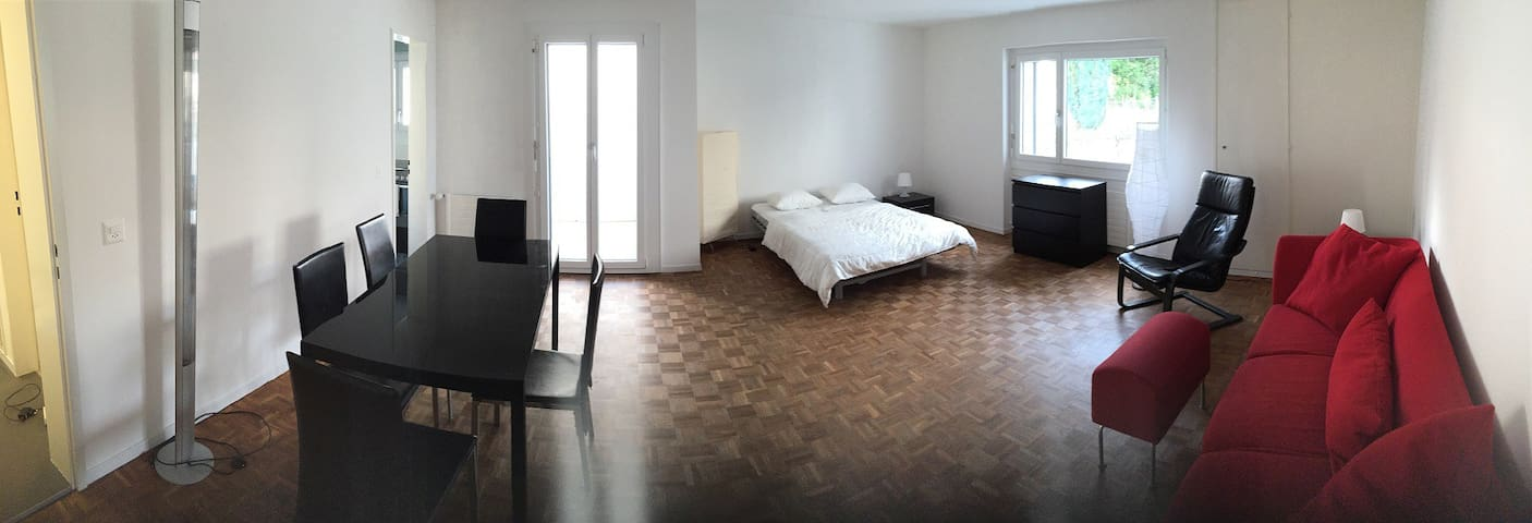 Small designer flat in the center of Pfäffikon SZ - Freienbach - อพาร์ทเมนท์