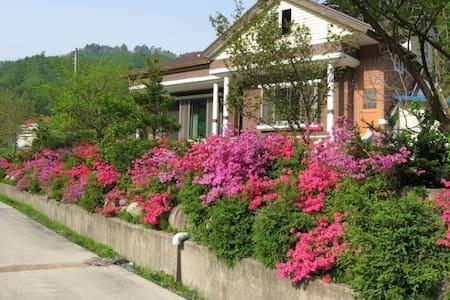강릉시 왕산면 천정 지역 계곡 주변25평 투룸 전원주택 전체/가족여행