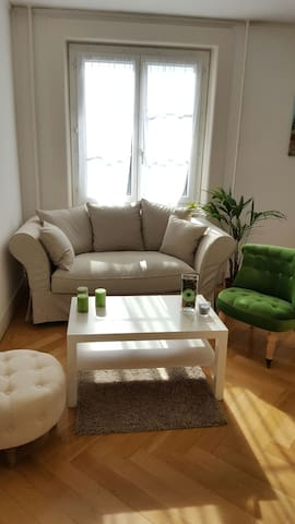 Charming new furnished apartment - Genève - Apartment