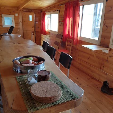 Lori's Cabin in the Galilee הבקתה של לורי בגליל