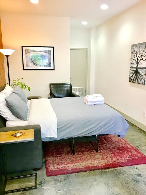 Large studio with high ceilings, contemporary decor, private bathroom, queen size SOFA-BED (Airdream brand, two inches air mattress topper allows more comfort than typical hide-a-bed frames).
