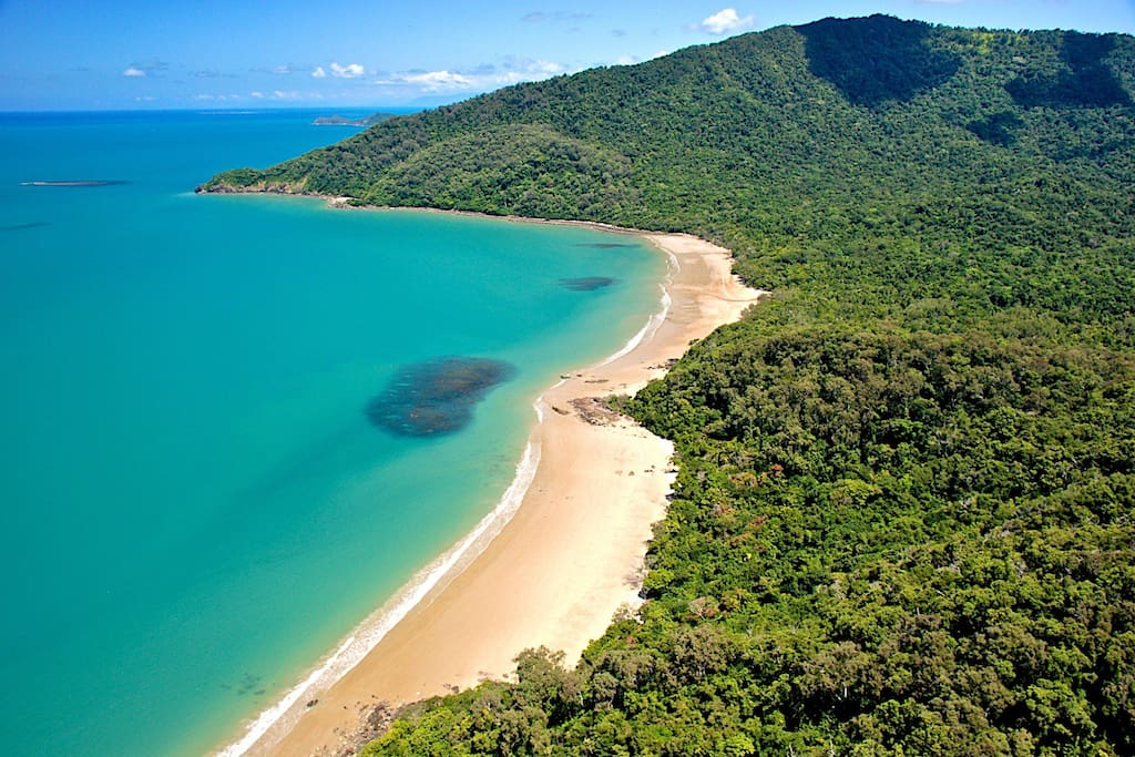Where the beach meets the rainforest