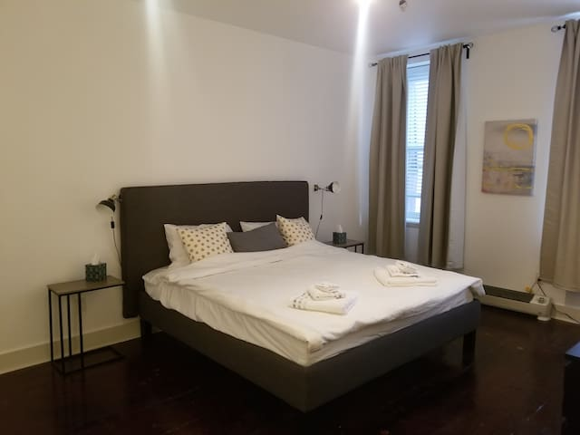 cozy one bedroom apartment -heart of old city!