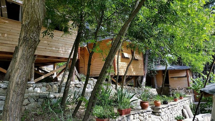 Chalet Shiva @Humsafar Glamping Place