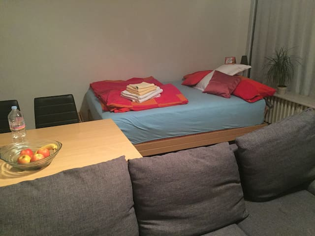 Flat in Mannheim close to Train Station/Wasserturm