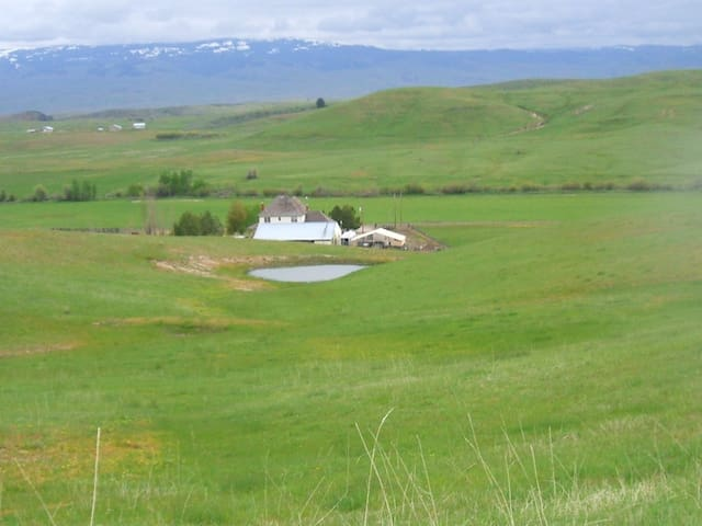 ranch in the summer