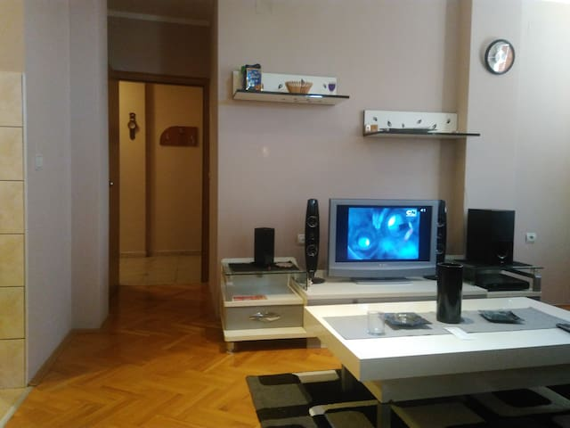 Two bedroom apartment Branicevska 1