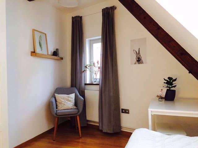 Hübsches Zimmer mitten in der Altstadt - Tübingen - Apartament