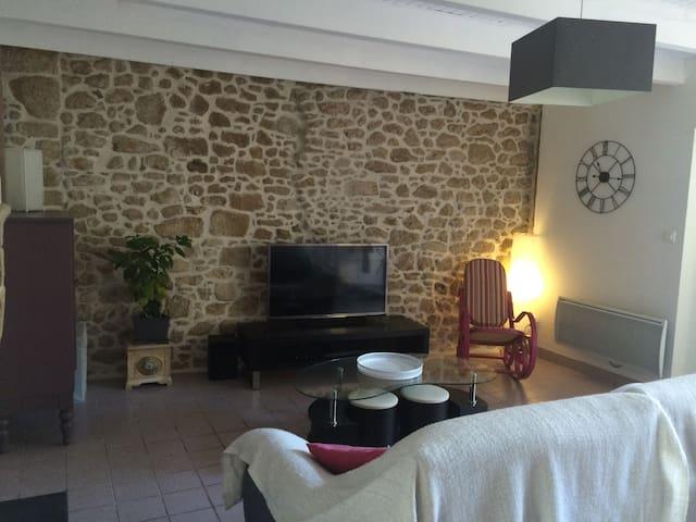 Location proche Puy du Fou et chateau Barbe Bleue - Tiffauges - Dom