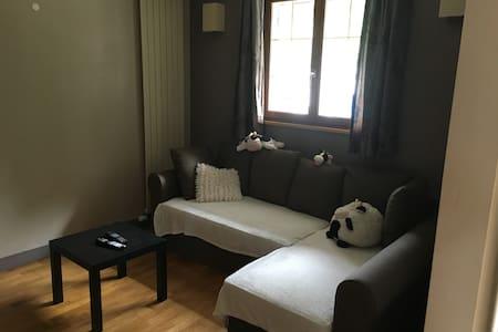 Vaste chambre aux abords de fontainebleau - Villiers-sous-Grez - Haus