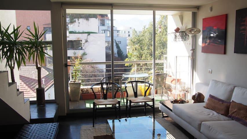 Spectacular modern loft, Providencia