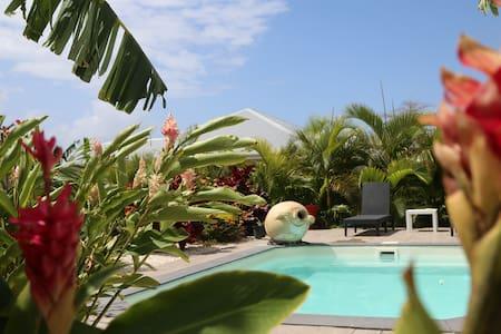 Magnifique villa avec jardin tropicale et piscine