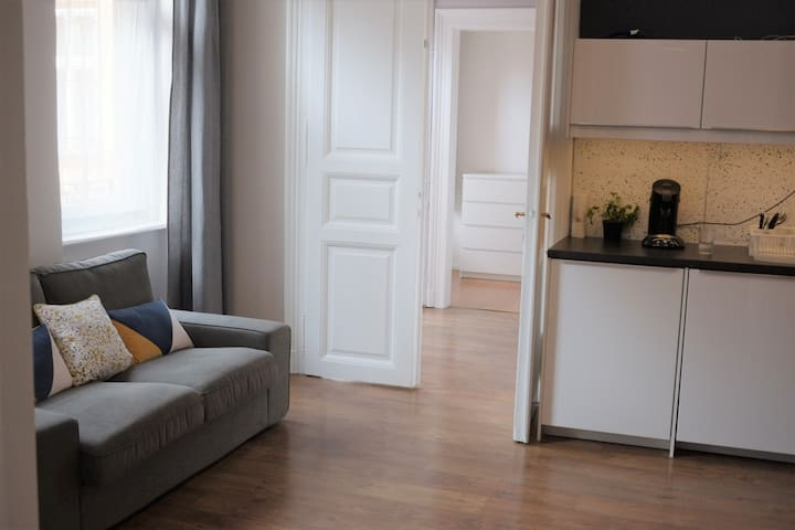 Long term rent next to Andrassy avenue