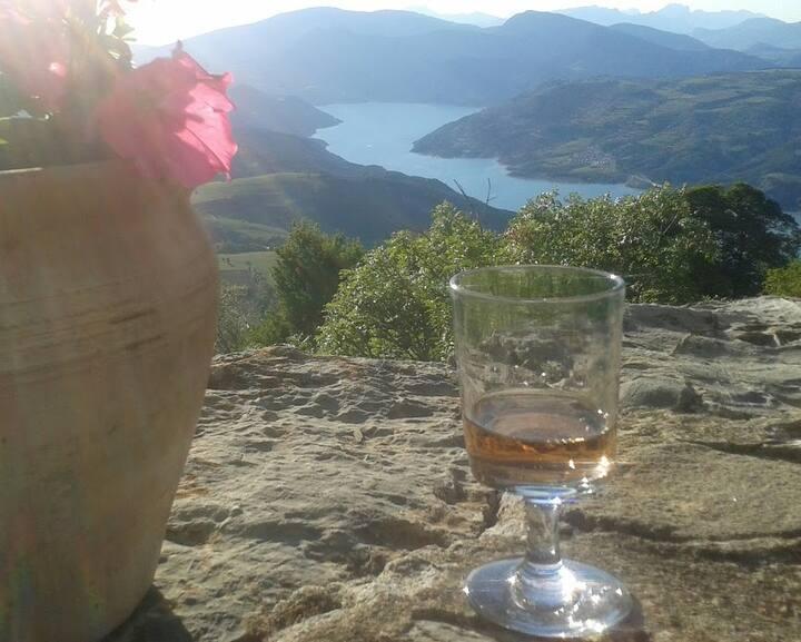 HAUTE PROVENCE Propriété vue lac de Serre-Ponçon 1