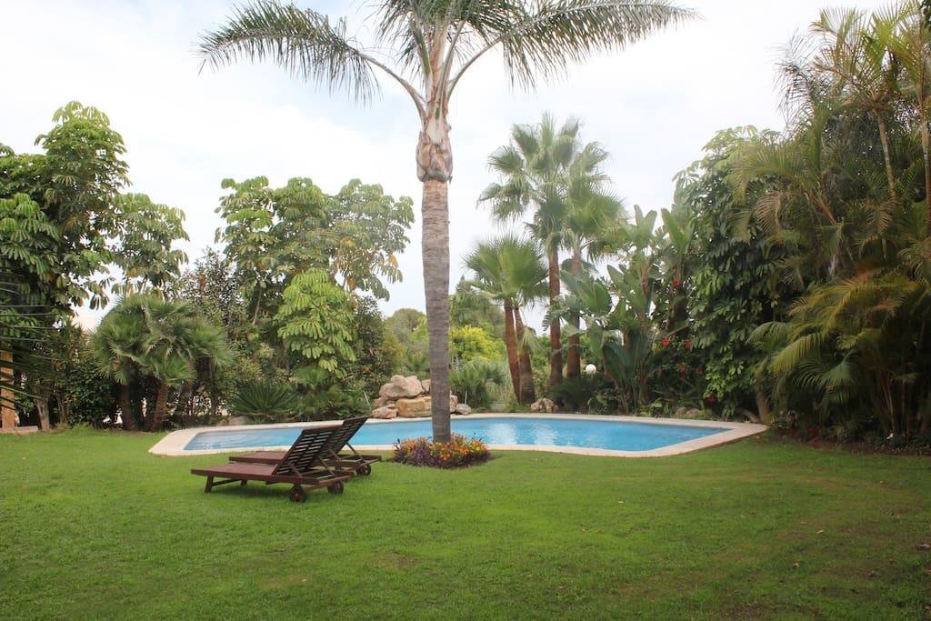 piscina en jardín privado