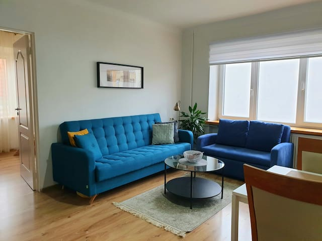 Cozy and spacious apartment in old town