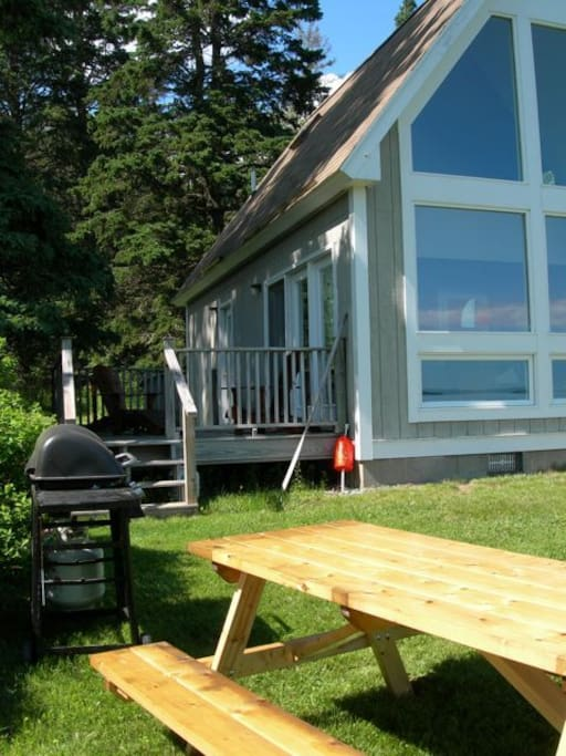 Gas BBQ and picnic table.