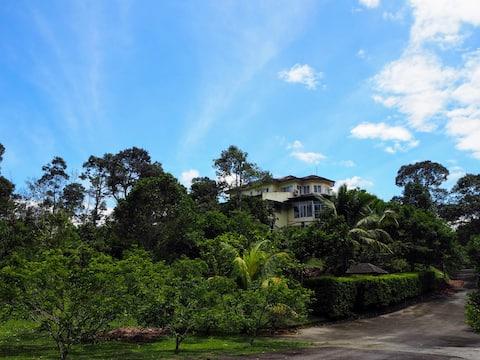 Teduh Villa - Nature Retreat