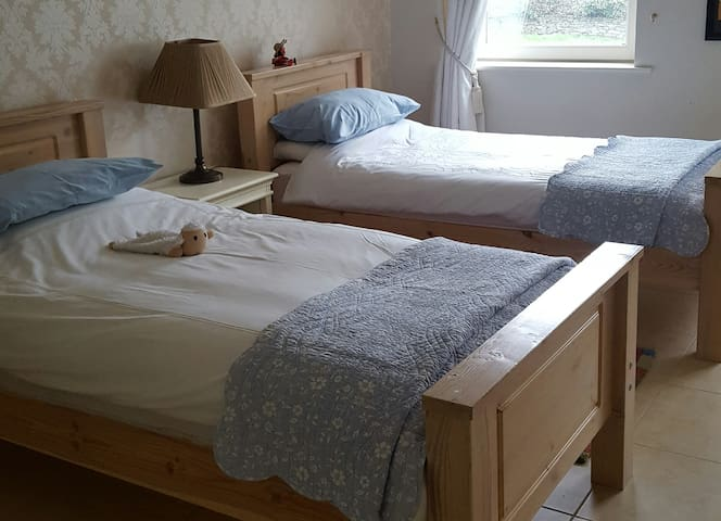 BEECHMORE HOUSE-Twin Room with private bathroom - Dundalk - Rumah