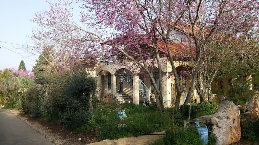 Center of Mistic Galilee - מרכז שקט-התבוננות בגליל - Shekhanya