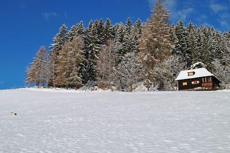 Urlaub für Körper, Geist & Seele - Grassendorf - กระท่อมบนภูเขา