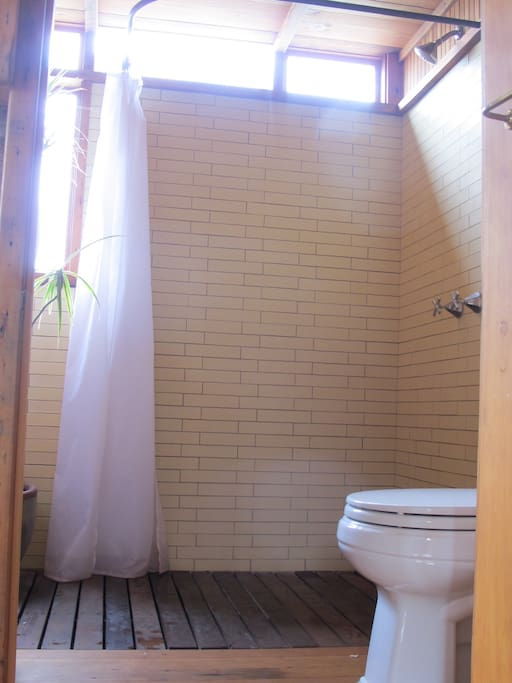 Walk-in shower in back bathroom, drains to garden.