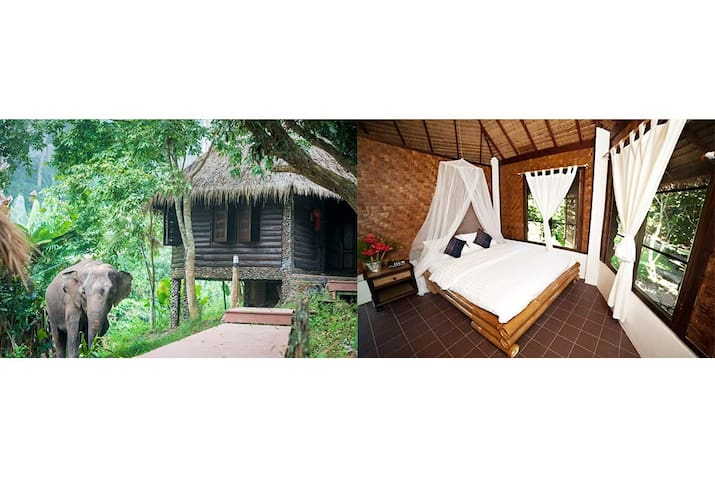 Nature Bungalow at Chai Lai Orchid Chiang Mai