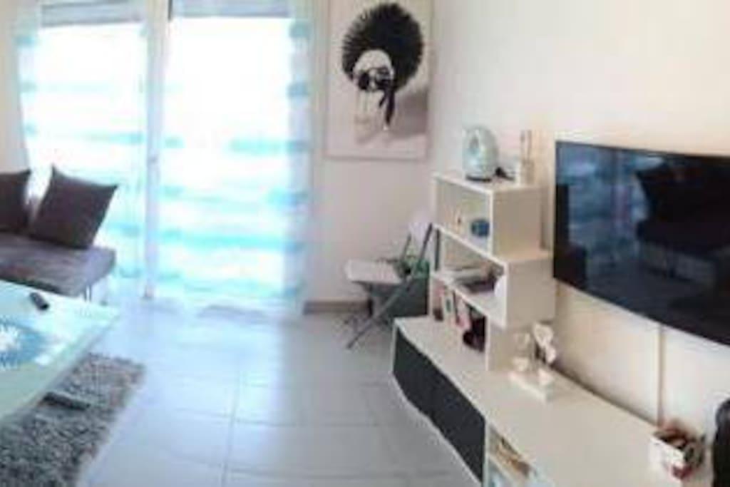 Appartement tr s charmant avec espace vert appartements - Salon de massage boulogne billancourt ...