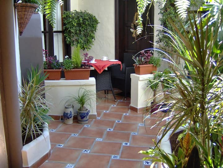 Appartement avec patio-terrasse