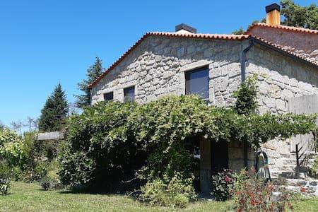 Orange Olives - Casa Vermelha