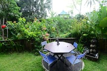 Garden and jungle view